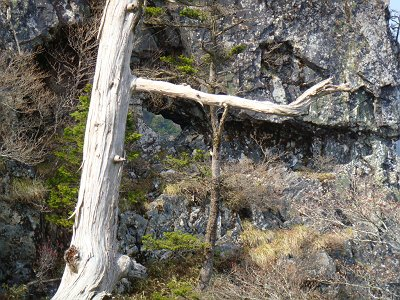 登ってきたところで穴が開いた岩があった