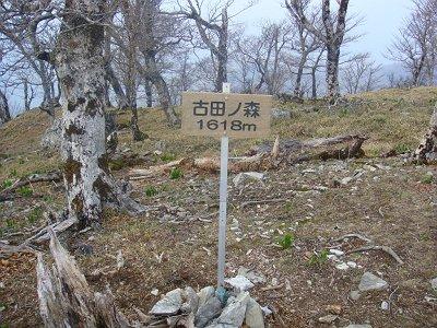 古田の森(1618m)に到着