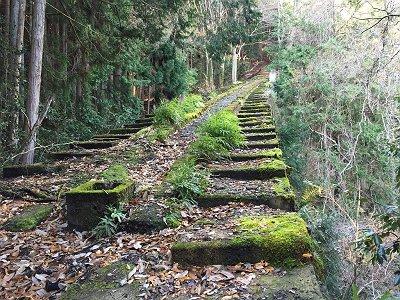 苔むした階段状の道