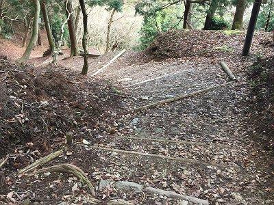 表登山道は階段だらけ。まるで金剛山の千早本道を思い出す