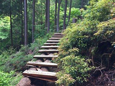 林業用につくられた橋。このまま林業道を進んでいきますが、進みすぎると行きすぎになります