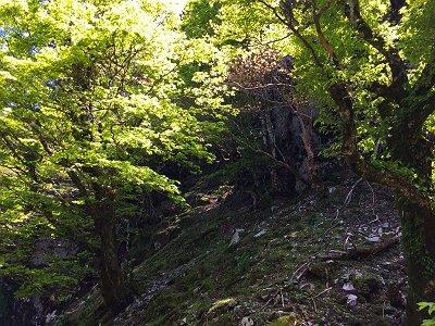 裏側のコルに到着したが、次のピークは岩場になっていたので登るの付加。をどう登ればよいのか考える