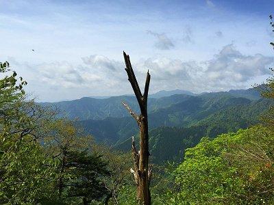 このあたりからは大峰の山々が望めるようになる