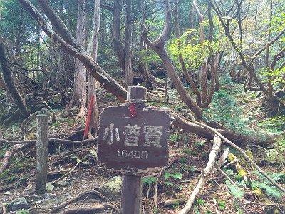 小普賢岳のコルに到着。私は以前もいったのでパスした