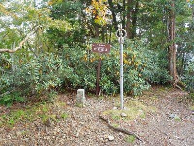 行者還岳(1546m)に到着