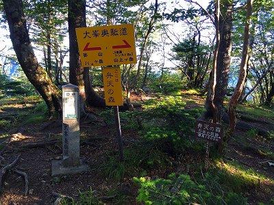 弁天の森(1600m)に到着