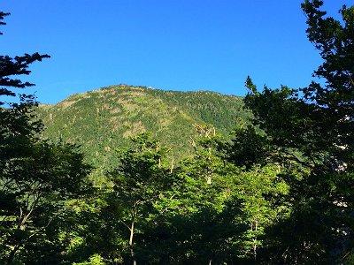 弁天の森から弥山小屋が見えた