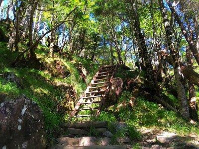 この鉄の階段が見えたらもう少し!
