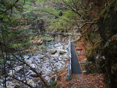 登山道は結構整備されているのに驚いた。滝だけ見に行く人とかいるのかな!?