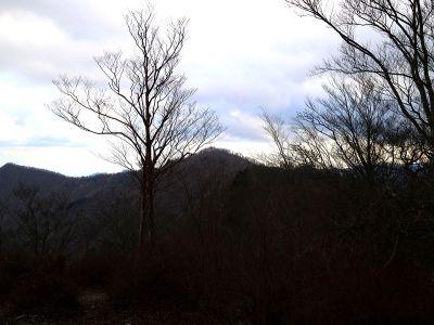 池木屋山を振り返って見る。あそこから来たんだな