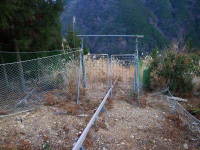 ここで柵を開けずにレールから離れて右へ下りていく。そして再びしばらく下って左の植林帯へ入って行く