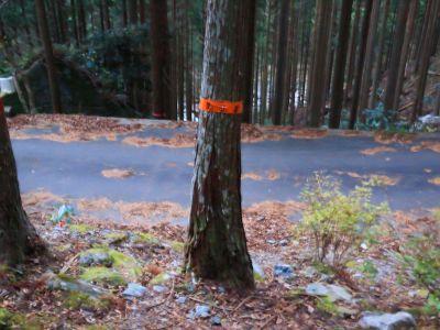 道路に下りた。ここを右に行くとすぐ駐車場
