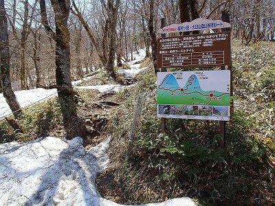 ここから稲村岳の山頂を目指す