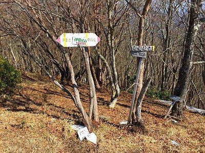 伊勢辻山(1290m)に到着