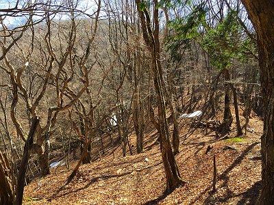 続いて赤ゾレを目指すが、稜線にでてから残雪がちらほら