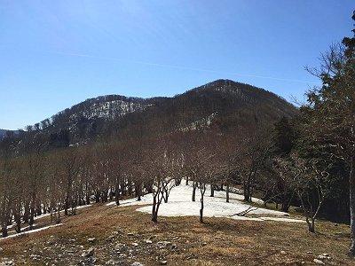ここから国見山への登りが始まる