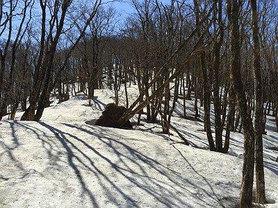 ここはたっぷり雪が残っていた。あまりハマらなかったが、やっぱ歩きにくかったしちょいしんどかった