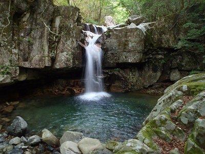 入渓してすぐの神秘的な滝。ここは左岸から巻きます