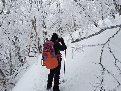 樹氷を撮影しながら歩く
