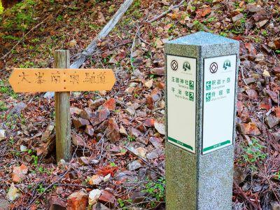 反対側の玉置神社まではまだ10km近くある。縦走する人大変そうだわ