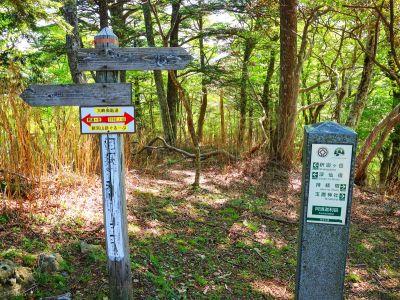なんとか急登が終わり阿須迦利岳まで登った。まだ体力はあるのでぶっ続けで歩く