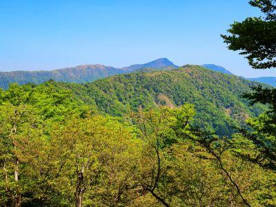 手前が次行く地蔵岳、奥は形的に釈迦ヶ岳だろう。釈迦ヶ岳の左側はおそらく古田の森付近なはず
