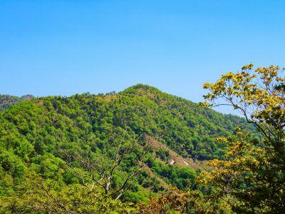 地蔵岳アップ。あのはげた部分を歩いてみたいな。きっと展望良さそうだし歩いていて気持ちよさそう