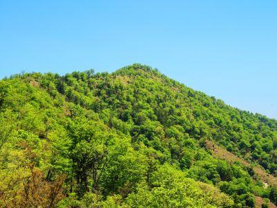 そろそろ地蔵岳が近くなってきたけど、まだもう少しある稜線を左から回り込んでいかないといけない