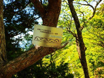 般若岳のピークに立っても樹林が邪魔して展望なし