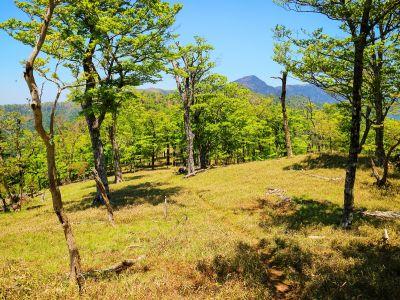 天狗の稽古場までは地蔵岳を北側に少しくだっていったところにある