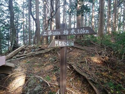 30分ほど急登が終わり尾根まで登ると道標があり。阿弥陀ヶ森まで5.8kmと結構長い