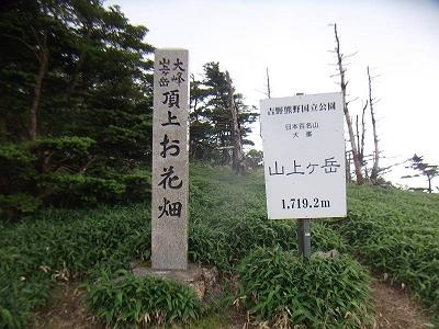 山上ヶ岳山頂(この裏側のピークに三角点あり)