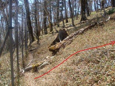 ネット沿いにったこの付近から右の名古屋岳のピークを目指す