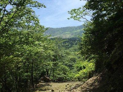 樹林の隙間から神仙平が見えてきた