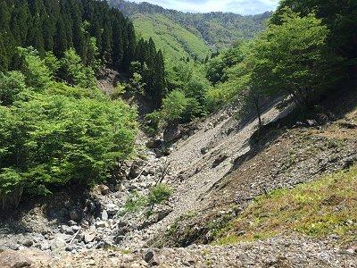 ここが林道終点で右側の樹林帯の中を沢にそってつきあがっていく感じになる