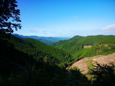 青根ヶ峰の登り口からは少し展望が良い