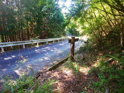 再び道路にでて林道を歩いていく