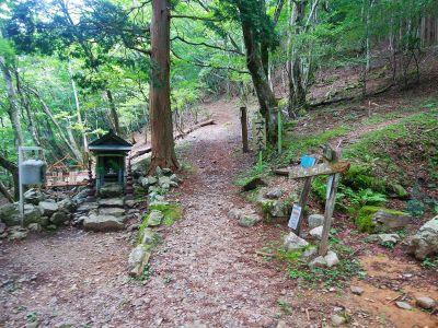 ここで近畿自然歩道だと直進して五番関までトラバースできるみたいだけど、とりあえず大天井ヶ岳は右側の尾根を登っていく