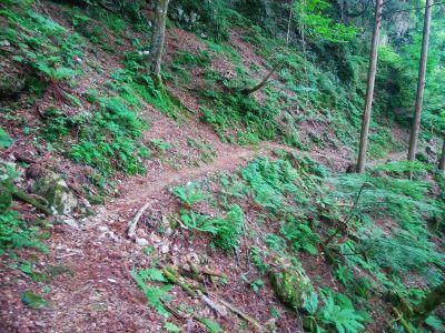 長いトラバースルートを歩いていくが崩壊場所やこまめなアップダウンが続いてバテバテになってしまった