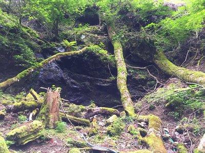 石清水の岩場<br>この登山ルートは休めるところがここしかなかったかも<br>水が冷たい