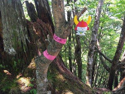 高塚山(1363.6m)記念撮影もひこにゃんがイケ!