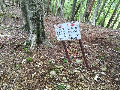 ここで昔の標識が残っていた。昔は登山道だったんだね
