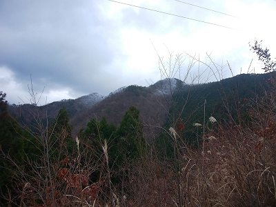 鉄塔付近から天和山の稜線が見えたけど、ピーク付近だけ霧氷が期待できそうと思いながら登っていく