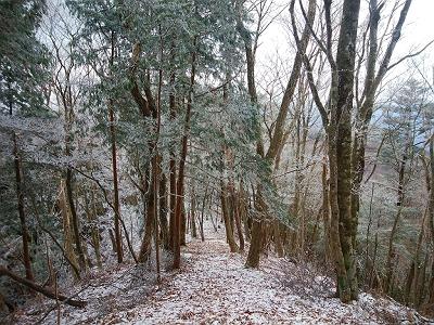稜線歩きは風が吹き荒れていたけど、霧氷がちらほら