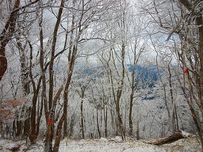 霧氷が素晴らしい。青空がでてくれればなぁっと思いながら歩いていく