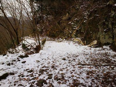 ところどころ雪が積もっているところがある。それにしても相変わらず長い林道だ