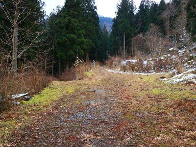 金引尾根・弥山川分岐に到着。結構早歩きだったので早く着いた