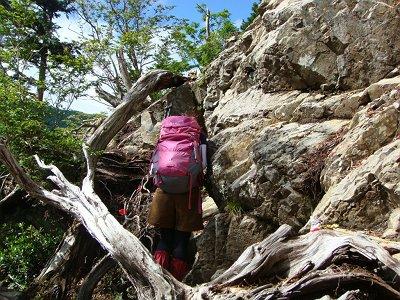 時折こういった岩も登る