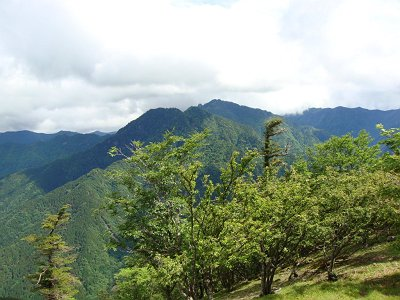 稲村ヶ岳とガスで隠れている部分が山上ヶ岳